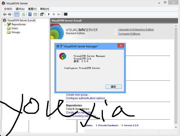 一體化SVN服務器端軟件(VisualSVN Server)