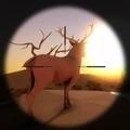 大草原狩獵